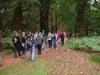Sponsored Walk + Picnic - Blackwater Arboretum June 2011