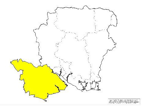 Yellow LIG meetings